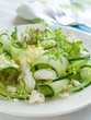Fresh salad of cucumber, lettuce and goat cheese, selective focu