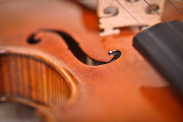 violin details isolated on a brown background