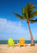Summer scene with colorful lounge chairs  and palm trees
