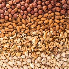 Surface covered with different nuts