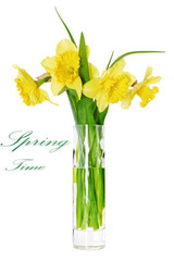 Beautiful spring flowers in vase: orange  narcissus (Daffodil).