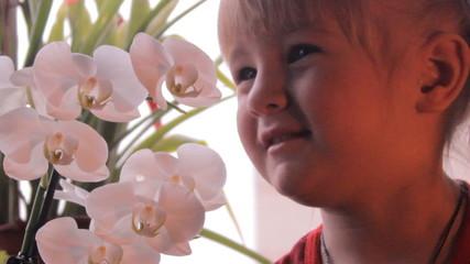 маленькая девочка нюхает орхидею цветы