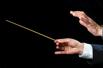 Conductors hands directing.