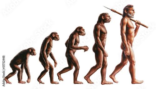 Evolution - 51752448