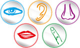 Five senses icon set - Vector Illustration poster