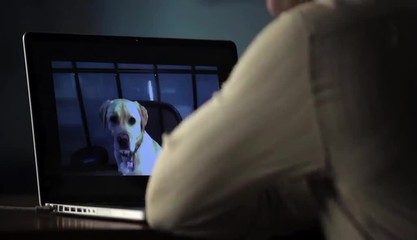 Black man sitting down at desk to teleconference with dog