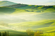 Countryside, San Quirico d´Orcia, Tuscany, Italy