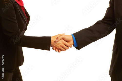 Business handshake sealing the deal