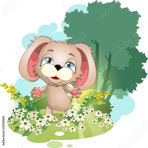 puppy on a meadow