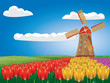 Windmill And Tulips
