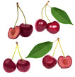 set of red sweet cherry isolated on white