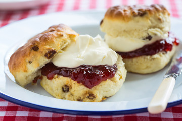 Fruit scones with clotted cream