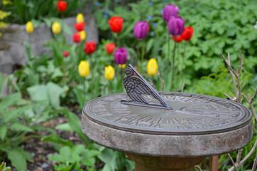 Sundial in tulip garden