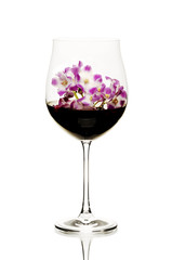 Concept red wine flavours - violet