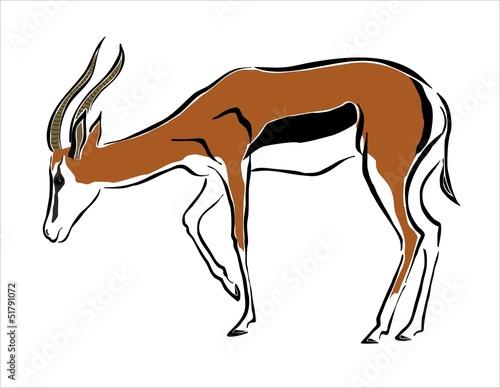 dibujo de una gacela