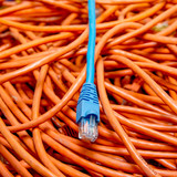 ethernet cables tangled blue and orange