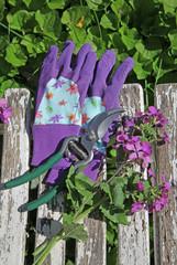 gants et sécateur