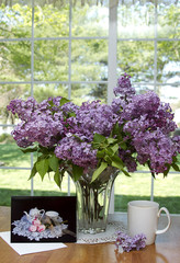 Lilacs and View