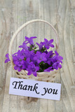 Thank you note and Campanula bell flowers in wicker basket