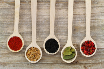 Selection of spices on wooden spoons