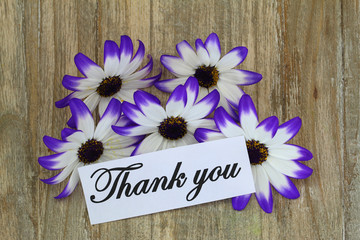 Thank you note and Senecio flowers on wooden background