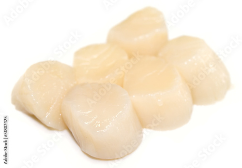 Heap of raw scallops isolated on white