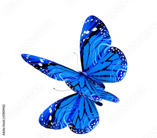 Fotobehang Vlinder Blue butterflies isolated on white reflective background