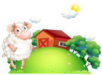 A sheep holding an empty paper in front of a barn