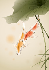 Koi fishes swimming in lotus pond