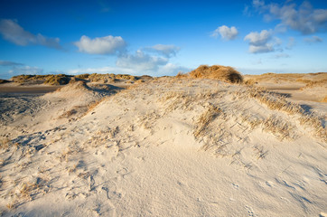 sand dunes by beach at North sea