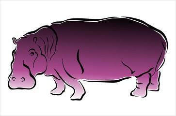 hipopótamo morado