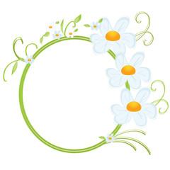 daisy-frame