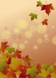 Herbstlicher Hintergrund mit Ahornlaub