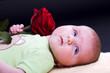 Neugeborenes hält eine rote Rose in der Hand
