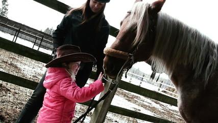 little girl stroking horse