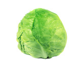 Green organic cabbage
