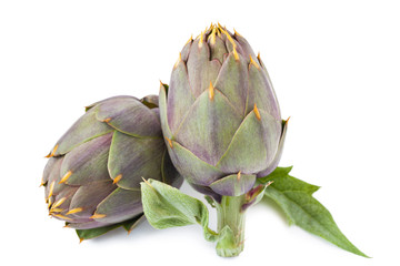 Artichokes isolated_II