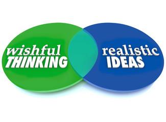 Wishful Thinking Realistic Ideas Venn Diagram