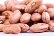 Organic Borlotti Beans
