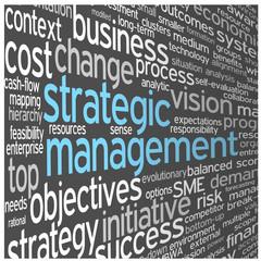 """STRATEGIC MANAGEMENT"" Tag Cloud (strategy business success)"
