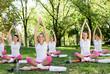 Meditation group in park