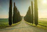 Tuscany, Landscape. Italy - 51842028