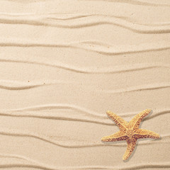 Sand Background