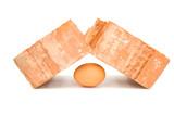 Fragile egg breaks brutal brick poster
