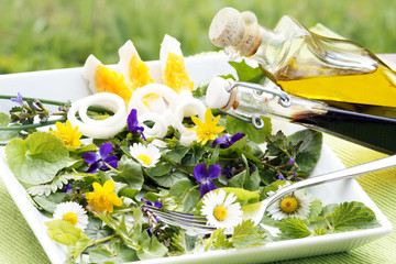 Frühjahrskräuter als Salat