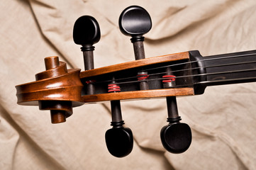 Detail of the head of a violoncello