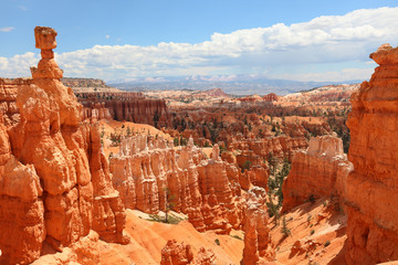 Bryce Canyon National Park landscape, Utah, USA