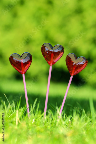 Wall mural Red lollipops in heart shape, on fresh green grass, in the garde