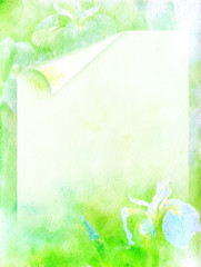 watercolors irises