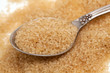 cane sugar in a spoon